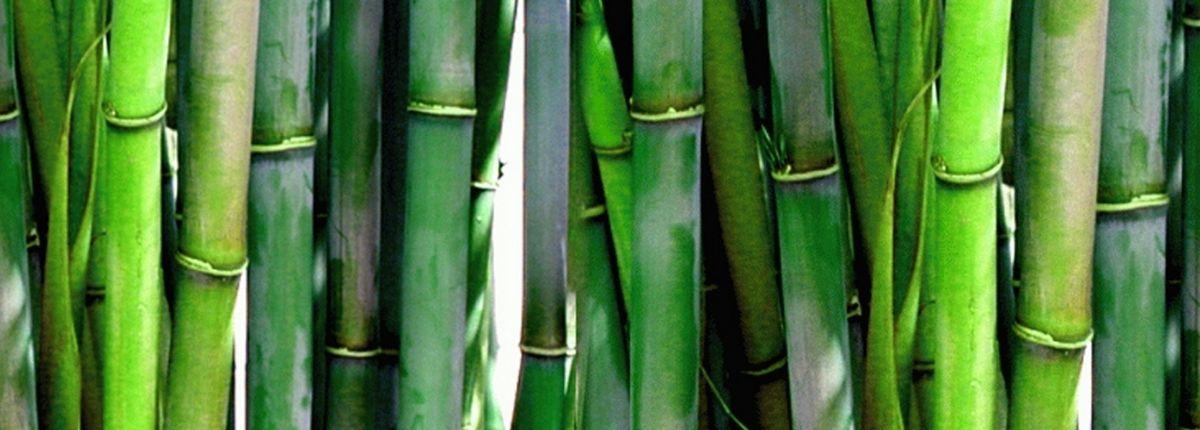 Dzianina bambusowa